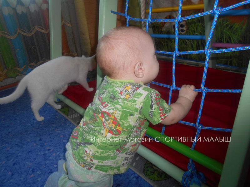Спортивные малыши и котики. Отзыв о домашнем развивающем комплексе